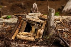 MC-Travel-Seabrook-Adorable-Things-Gnome-Trail