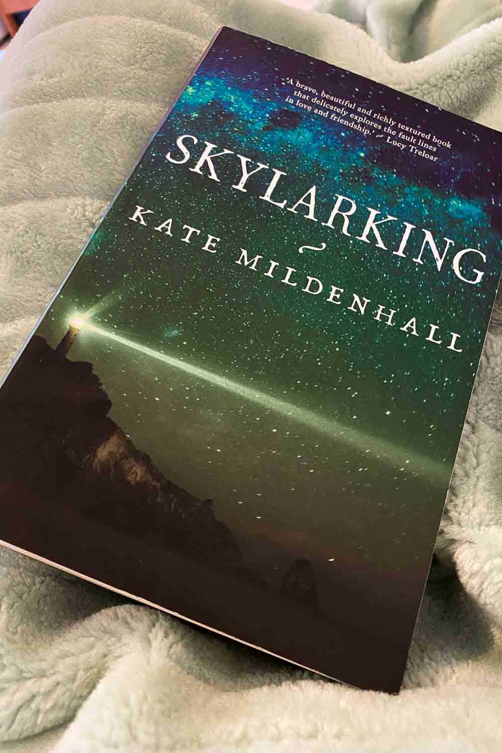 Two best friends in Skylarking by Kate Mildenhall