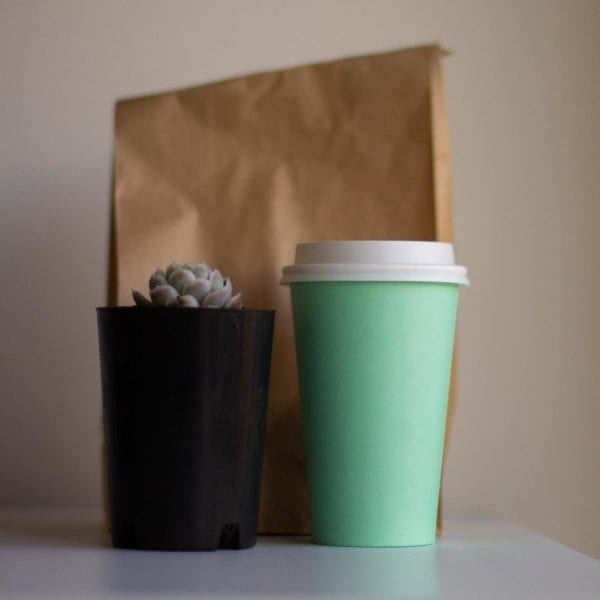 A takeaway coffee cup and a succulent plant in front of a brown paper bag purchased during lockdown.